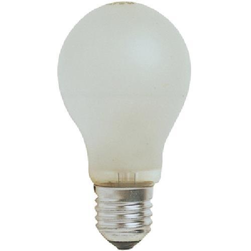 東亞 磨砂燈泡(5W)