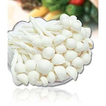 台灣白精靈菇(600g+-5%/包)