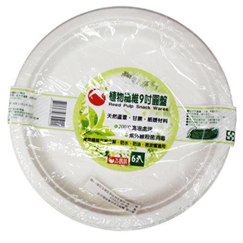 RT 大潤發植物纖維9吋圓盤(6入/22.9CM)