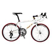 《StepDragon》★小鐵人跑車系列★20吋18速腳踏車(時尚白)