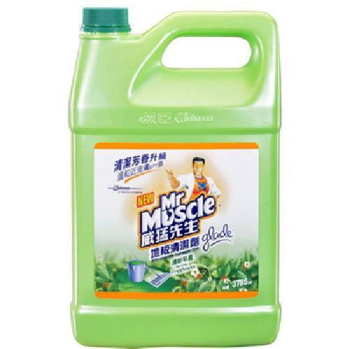 《威猛先生》地板清潔劑-清新早晨(3785ml /瓶)