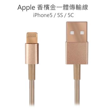 Apple 香檳金 iPhone5 Lightning 8pin 傳輸線 (適用ios7系統)
