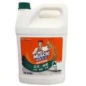 《威猛先生》地板清潔劑-森林芬多精(1加侖)