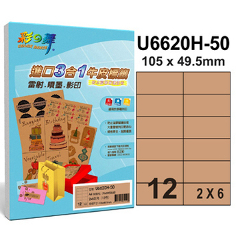 彩之舞 12格 進口3合1牛皮標籤U6620H-50*3包