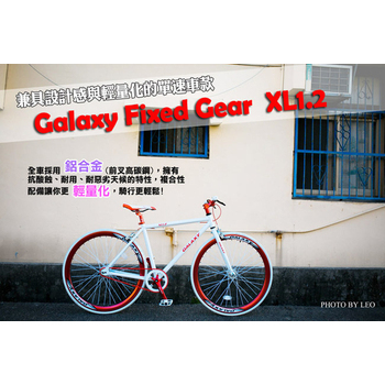《BIKEDNA》XL1.2 Fixed Gear單速車(公主白)