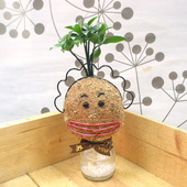 《Light+Bio》花媽造型苔球