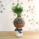《Light+Bio》幸福苔球-叮噹造型苔球