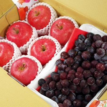 《鮮果日誌》富貴健康禮盒(日本富士蘋果6入+巨峰葡萄2.5台斤)