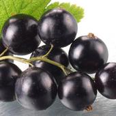 《幸美生技》紐西蘭進口速凍黑醋栗(1公斤/包)