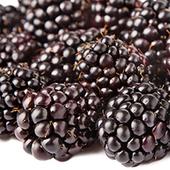 《幸美生技》進口速凍黑莓(1公斤/包)