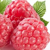 《幸美生技》進口速凍覆盆莓(1公斤/包)