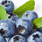 《幸美生技》美國進口速凍栽種藍莓(1公斤/包)