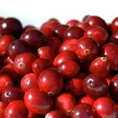 《幸美生技》美國進口速凍蔓越莓(1公斤/包)