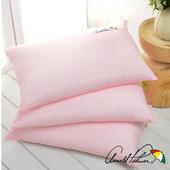 《Arnold Palmer雨傘牌》天絲羊毛保暖枕2入
