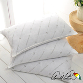 《Arnold Palmer雨傘牌》蓄溫保溫竹炭枕2入