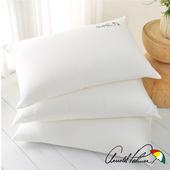 《Arnold Palmer雨傘牌》遠紅外線緹花健康枕1入