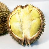 《鮮果日誌》水果之王金枕頭榴槤(20斤重原箱約3~4顆)