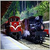 《DC-PUZZLE》台灣之美系列1000PIECES拼圖-嘉義-阿里山森林鐵路