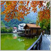 《DC-PUZZLE》台灣之美系列1000PIECES拼圖-車埕-池畔秋景