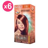《柔蝶》自然色彩染髮霜-太陽紅(6入/組)