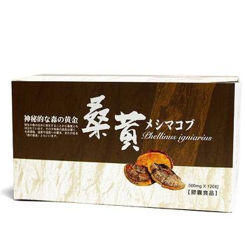 草本之家 菇蕈之王-桑黃120粒