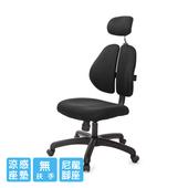 《GXG》雙背涼感 電腦椅 (無扶手) TW-2995ENHA(請備註顏色)