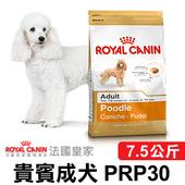 《法國皇家》貴賓成犬 PRP30(7.5公斤)