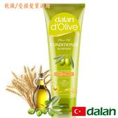 《土耳其dalan》橄欖油小麥蛋白修護護髮素 (乾燥/受損髮質)(200ml)好禮三重送(贈品不累贈,依訂單結帳金額門檻擇一贈送)