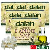 《土耳其dalan》月桂橄欖油傳統手工皂150g (12%+72%)(6入)