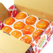 《鮮果日誌》10A摩天嶺富有甜柿(10入禮盒)