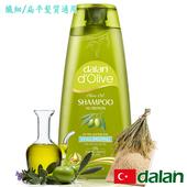 《土耳其dalan》橄欖油米麥蛋白豐盈洗髮露(纖細/扁平髮質專用)(400ml)