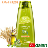 《土耳其dalan》橄欖油小麥蛋白修護洗髮露(乾燥/受損髮質)(400ml)好禮三重送(贈品不累贈,依訂單結帳金額門檻擇一贈送)