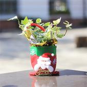 《Light+Bio》耶誕提袋植栽