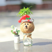 《Light+Bio》耶誕小熊苔球
