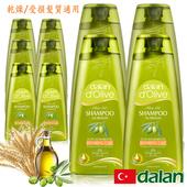 《土耳其dalan》專業修護洗髮露限量回饋10件組(乾燥/受損髮質)(400mlX4+50mlX6)