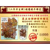 《百年永續健康芝王》牛樟芝/菇(二年半超優級) 生鮮品 (37.5g /1兩)