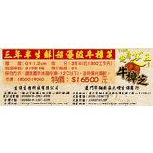 《百年永續健康芝王》牛樟芝/菇(三年半超優級) 生鮮品 (37.5g /1兩)