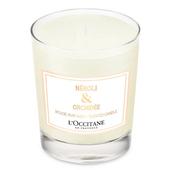 《L'OCCITANE 歐舒丹》橙花&蘭花香氛蠟燭190g $1520