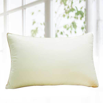 《FITNESS》吸溼快乾枕(1顆_ 48x75cm)
