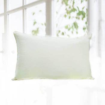 《FITNESS》可機洗舒柔枕(1顆_ 48x75cm)