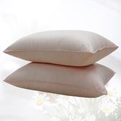 《FITNESS》高機能舒柔枕(2顆_ 48x75cm)