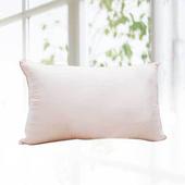 《FITNESS》高機能舒柔枕(1顆_ 48x75cm)