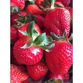《iGo 愛果》大湖牛奶草莓(400g±10%/盒)