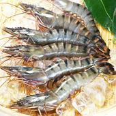 鮮凍特級草蝦
