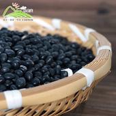 《小農夫》台南3號-國產青仁黑豆(500g/包)(3包)