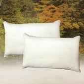 《FITNESS》日本進口纖維 東洋紡抗菌枕(2顆)(48x74cm)