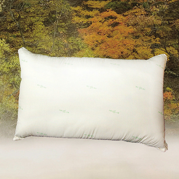 《FITNESS》日本進口纖維 東洋紡抗菌枕(48x74cm)