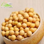 《小農夫》高雄選10號-國產非基改黃豆(500g/包)(3包)