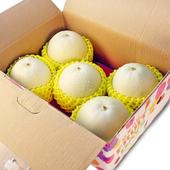 《鮮果日誌》嘉義特級美濃瓜(3.5斤禮盒)