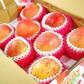 《鮮果日誌》智利富士蘋果(8入禮盒)